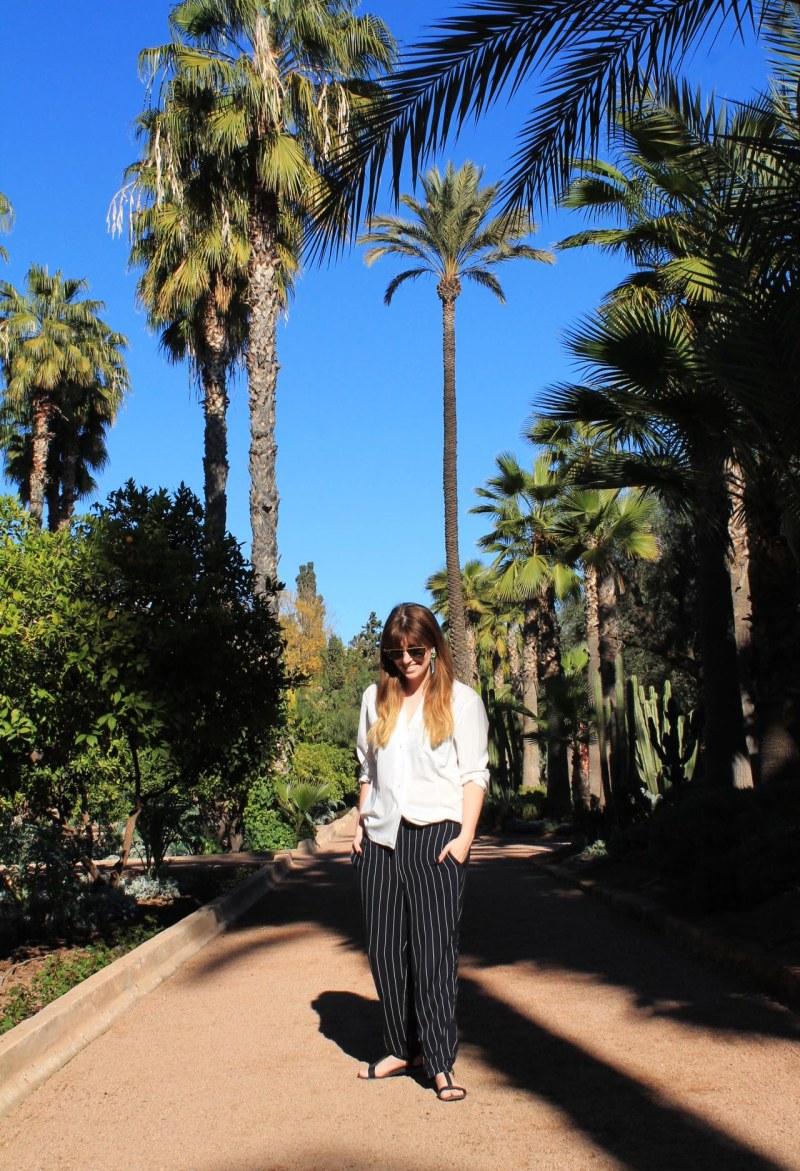 palmklarr